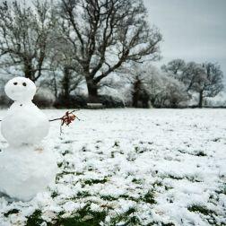 pay-snow